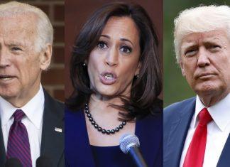 wall pelosy donald trump democrats