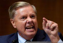 Lindsey Graham, gun control, gop